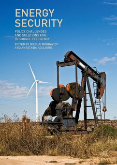 Energy Security (eBook, PDF)