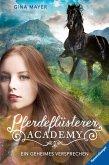 Ein geheimes Versprechen / Pferdeflüsterer Academy Bd.2 (Mängelexemplar)