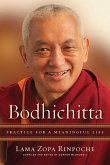 Bodhichitta: Practice for a Meaningful Life