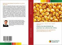Efeito da densidade de plantas na cultura do milho