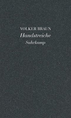 Handstreiche (eBook, ePUB) - Braun, Volker