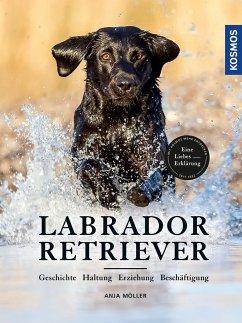 Labrador Retriever - Möller, Anja