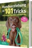 Hundeerziehung in 101 Tricks