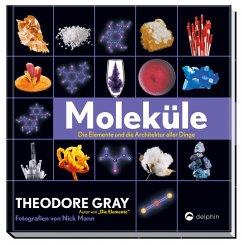 Moleküle - Gray, Theodore