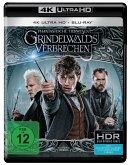 Phantastische Tierwesen: Grindelwalds Verbrechen (4K Ultra HD + Blu-ray)