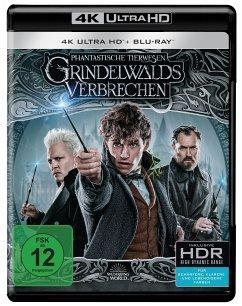 Phantastische Tierwesen 2 - Grindelwalds Verbrechen - Kinofassung (4K UHD) - Eddie Redmayne,Katherine Waterston,Dan Fogler
