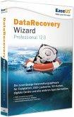EaseUS DataRecovery Wizard Professional 12.0 (Datenrettungssoftware)
