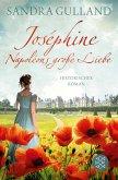 Joséphine - Napoléons große Liebe / Joséphine Bd.1 (eBook, ePUB)