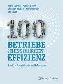 100 Betriebe für Ressourceneffizienz (eBook, PDF)