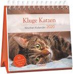 Kluge Katzen - Wochen-Kalender 2020