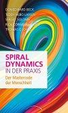 Spiral Dynamics in der Praxis