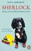 Sherlock, der Feuerwehrhund (eBook, ePUB)