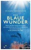 Das blaue Wunder (eBook, ePUB)