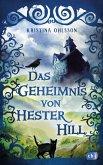 Das Geheimnis von Hester Hill (eBook, ePUB)
