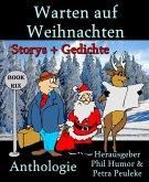 Warten auf Weihnachten (eBook, ePUB)