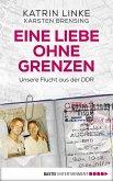 Eine Liebe ohne Grenzen (eBook, ePUB)