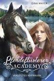 Verletztes Vertrauen / Pferdeflüsterer Academy Bd.4 (eBook, ePUB)