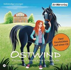 Für immer Freunde & Die rettende Idee / Ostwind für Erstleser Bd.1+2 (1Audio-CD) - Thilo