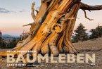 Der Baumleben-Kalender 2020