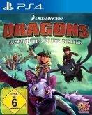 DRAGONS - Aufbruch neuer Reiter (PlayStation 4)