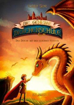 Der Drache mit den silbernen Hörnern / Die geheime Drachenschule Bd.2 - Skye, Emily