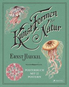 Ernst Haeckel: Kunstformen der Natur. Posterbuch mit 22 Postern - Uthoff, Kira