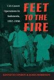 Feet to the Fire (eBook, ePUB)