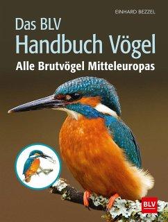 Das BLV Handbuch Vögel - Bezzel, Einhard