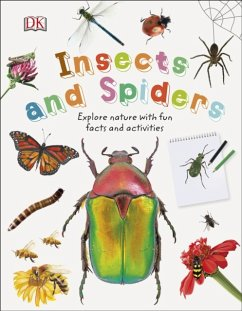 Insects and Spiders - DK