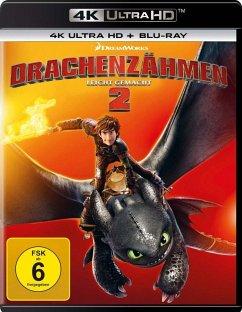 Drachenzähmen leicht gemacht 2 (4K Ultra HD + Blu-ray) - Keine Informationen