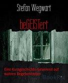 beGEISTert (eBook, ePUB)
