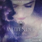 Wütender Sturm / Die Farben des Blutes Bd.4 (MP3-Download)
