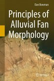 Principles of Alluvial Fan Morphology (eBook, PDF)