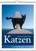 Katzen - Literarisch durchs Jahr 2020