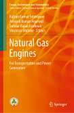 Natural Gas Engines (eBook, PDF)