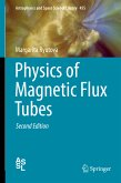 Physics of Magnetic Flux Tubes (eBook, PDF)