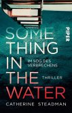 Something in the Water - Im Sog des Verbrechens (eBook, ePUB)