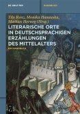 Literarische Orte in deutschsprachigen Erzählungen des Mittelalters (eBook, ePUB)