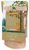 Peter & Piet. Mein erstes Baum-Set Eberesche