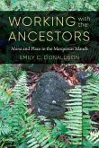 Working with the Ancestors