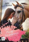 Drei Pferdefreundinnen - Ein neuer Star im Sattel (eBook, ePUB)