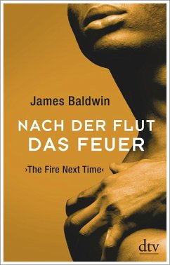 Nach der Flut das Feuer (eBook, ePUB) - Baldwin, James