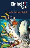 In der Schatzhöhle / Die drei Fragezeichen-Kids Bd.64