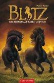 Ein Rennen auf Leben und Tod / Blitz Bd.4 (eBook, ePUB)