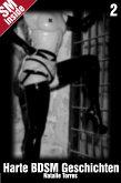 Harte BDSM Sexgeschichten (eBook, ePUB)