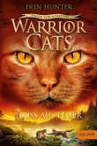 Fluss aus Feuer / Warrior Cats Staffel 6 Bd.5 (eBook, ePUB)