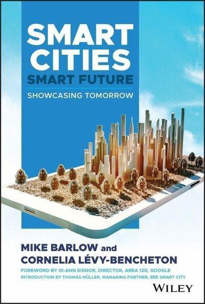Smart Cities, Smart Future (eBook, PDF)