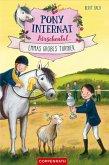 Emmas großes Turnier / Pony-Internat Kirschental Bd.2 (eBook, ePUB)