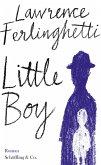 Little Boy (eBook, ePUB)