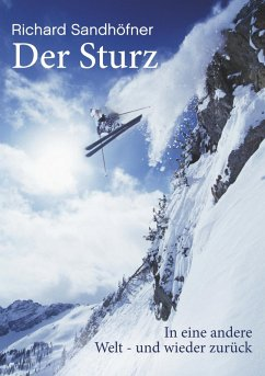 Der Sturz (eBook, ePUB) - Sandhöfner, Richard